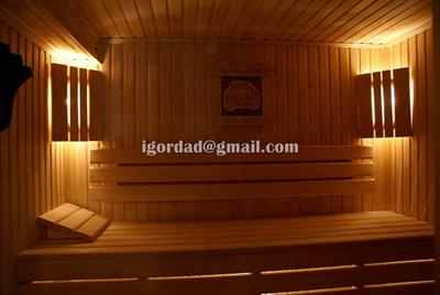 Saunas made in the ukraine for Build your own sauna cheap