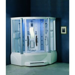 Ariel Steam Room Shower